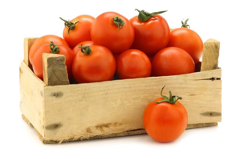 levná rajčata, papriky, salát, okuky, ředkvičky, celer, mrkev, petržel, petržel, kukuřice, bylinky Plzeň