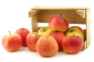 Ovoce a zelenina pro jídelny a restaurace Plzeň - eshop