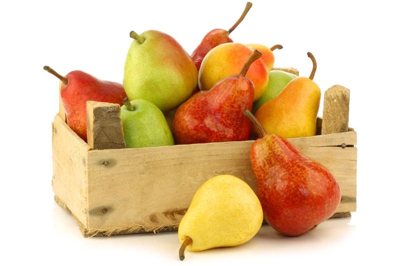 Levné hrušky, jablka, pomeranče, mandarinky, víno, kiwi, grepy, citrusy, citrony, banány